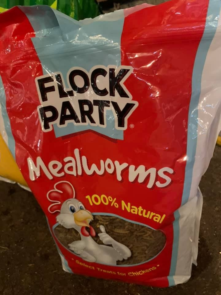 flspca-flock-party