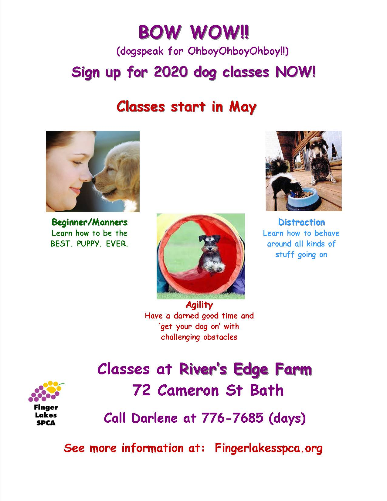 FLSPCA | Dog Training Classes 2020