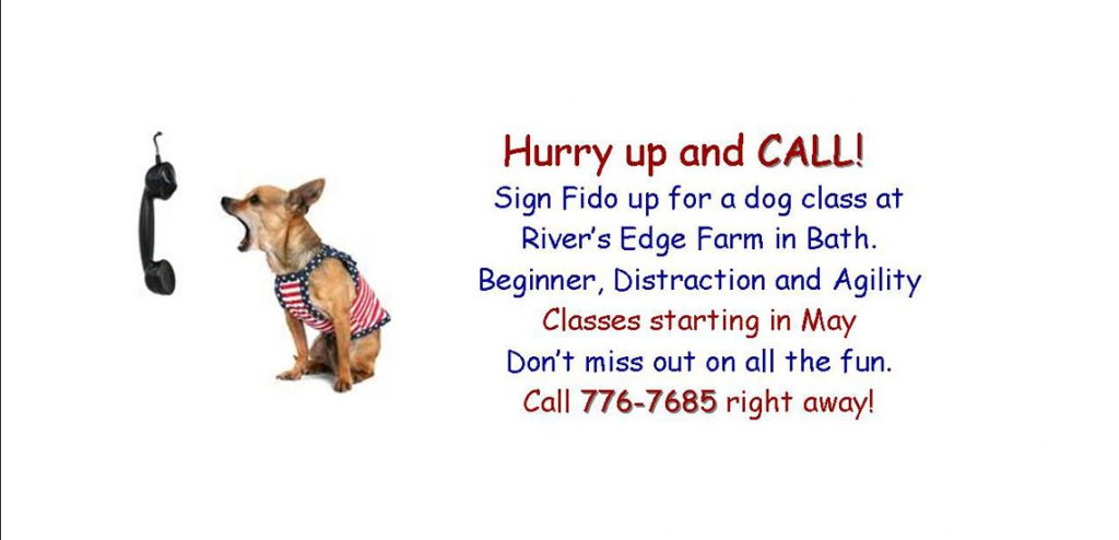 FLSPCA Dog Training Sign Up 2020