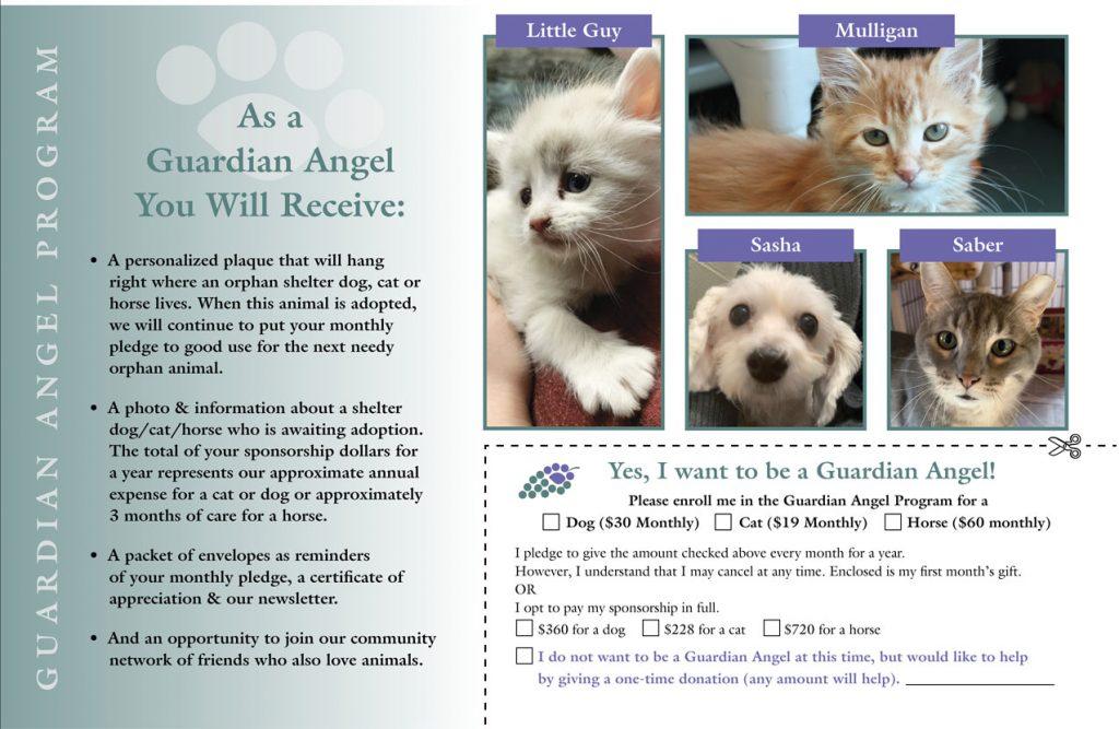 FLSPCA Guardian Angel Appeal   November 2020